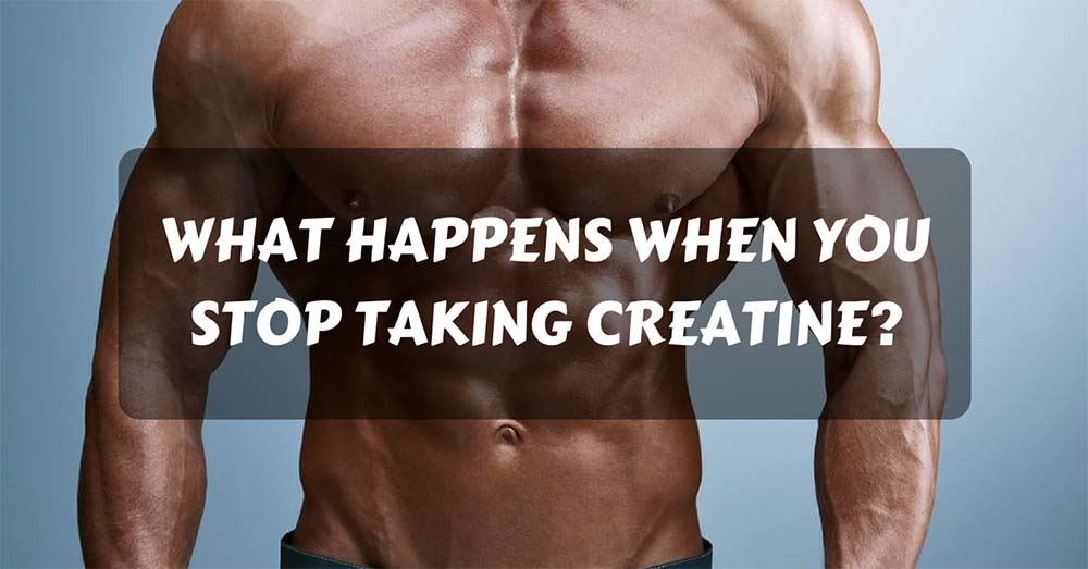 What Happens When You Stop Taking Creatine